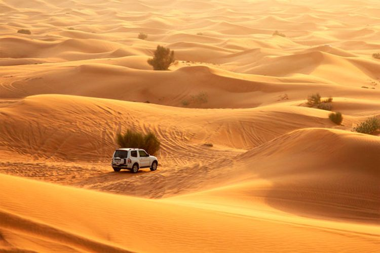 Sundowner Dune Dinner Safari + Hop-On Hop-Off Dubai