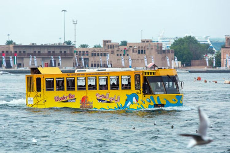 Wonder Bus + Hop-On Hop-Off Dubai