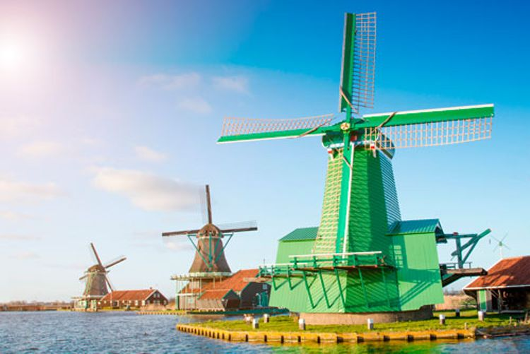 Countryside & Windmills Tour + Hop-On Hop-Off Amsterdam